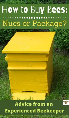 Do you want to be a beekeeper?  Awesome! How should you buy your first bees?  Should you buy a nuc or packaged bees?  I've got a lot to say about this as an experienced beekeeper.  Learn from someone who has made all of the mistakes and save your money! #nucsorpackage #beekeeping #beginnerbeekeeping Off Grid Survival, Survival Shelter, Survival Tips, Bee Nuc, Subsistence Agriculture, Package Bees, Raising Farm Animals, Beekeeping For Beginners, Self Sufficient
