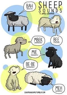International Sheep Sounds by James Chapman Previously: Cow Sounds, Bee Sounds, Cat Sounds Language Study, English Language, English Grammar, James Chapman, Funny Comic Strips, Different Languages, Funny Comics, Fun Facts, Funny Pictures