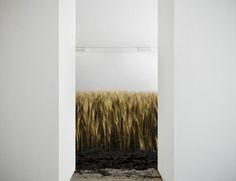 Missplaced Nature by Fabian Buergy, via Behance Visual Aesthetics, Installation Art, Online Art, Art Direction, Sculpture Art, Contemporary Art, Illustration Art, Illustrations, Artwork