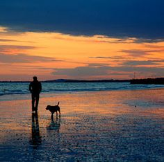 Walks on the beach with your dog is a special time