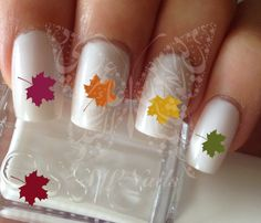 Autumn Fall Leaves Thanksgiving Nail Art Fall Water Decals Transfers Wraps