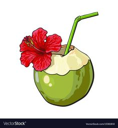 Coconut cocktail drink decorated with hibiscus vector image on VectorStock Coconut Vector, Coffee Artwork, Cocktails Vector, Indian Illustration, Coconut Drinks, Summer Poster, Mini Canvas Art, Marble Art, Arte Pop