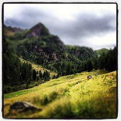 #escursione in #lagorai #lagoerdemolo