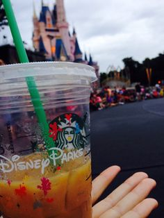 Starbucks at Walt Disney World 2014 - HELL YEAH!!!!