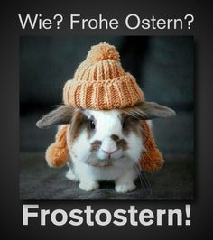Frohe Ostern! ☺