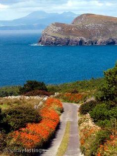 Road to the Ligthhouse, Valentia Island #wildatlanticway