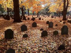 "rixwilson: ""  … Everett - Bell Rock Cemetery - Gravestones in the Autumn Leaves 