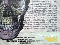 Cheap and Easy Wall Art: DIY Anatomical Prints | www.heartsandsharts.com