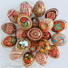 Anna Perun's Beautiful Pysanky - Real Handmade Traditional Ukrainian Chicken and Goose Eggs | Flickr : partage de photos !