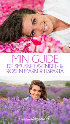 De smukke lavendel og rosen marker i Isparta - Rejsebloggen TeaTougaard.dk Markers, Lavender Roses, Sharpies, Sharpie Markers