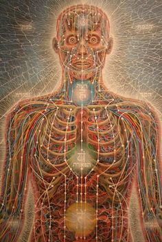 Alex Grey- I love his art because it is pretty much spot on with the actual body along with the meridians Alex Grey, Alex Gray Art, Tool Artwork, Psychadelic Art, Tool Band, Sacred Geometry Tattoo, Psy Art, Process Art, Visionary Art