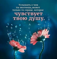 Russian Quotes, Teal And Pink, Quotes And Notes, Girly Pictures, Self Development, In My Feelings, Good Morning, Life Is Good, Philosophy
