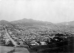 Newtown, Wellington, 2 December 1905 Reference Number: 1/2-080469-F View of Newtown, Wellington, 2 December 1905. Includes Coromandel Street, Owen Street, Daniell Street and Russell Terrace. Taken by unidentified photographer.