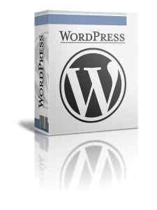 Diseño web en WordPress Qué ofrece?