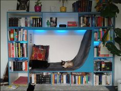Her boyfriend built this fantastic & cozy bookshelf for her as a Christmas present. You can sit in it and it has LED backlight with changing colors (depending on the genre she's reading ;-)).  This BF sounds like a keeper!