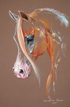 Chestnut Arabian Horse Art Print by Paulina Stasikowska All prints are professionally printed packaged and shipped within 3 - 4 business days Choose from multiple sizes and hundreds of frame and mat options Painted Horses, Horse Drawings, Art Drawings, Images D'art, Horse Artwork, Equine Art, Pastel Art, Animal Paintings, Pastel Paintings