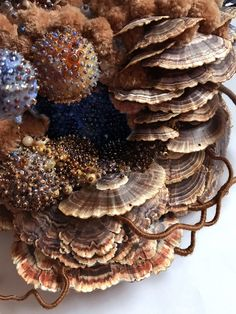 Symbiotic Assemblages by Amy Gross Combine Animals and Insects with Fictionalized Habitats Textile Sculpture, Textile Fiber Art, Textile Artists, Soft Sculpture, Plant Insects, A Level Textiles, Growth And Decay, Mushroom Art, Colossal Art