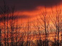 Evening Sky in Hay River