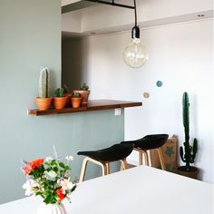 BLOGGED// fini Le suspens. Mon ancien mur noir est devenu vert de gris ! #madecoamoi #deco #decor #homedecor #duluxvalentine #mesmursracontent #frenchblogger #blogdeco #frenchinteriors #brandnew #greenattitude #cactus #succulents #passioncactus #urbanjunglebloggers link in profile