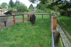 Small Horse-Property Tour | Slideshows | TheHorse.com