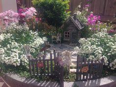 We absolutely adore Aileen's fairy garden!