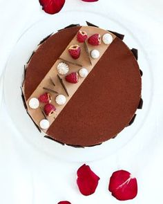 no Pudding, Desserts, Food, Tailgate Desserts, Deserts, Custard Pudding, Essen, Puddings, Postres