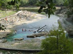 little river springs florida   River Springs