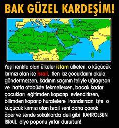 Einstein, Egypt, Islam, Interesting Facts, Funny