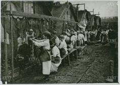 WW1. A group of women weaving camouflage nets, invented by the artist Louis…