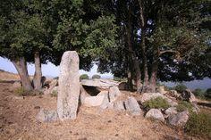 Site in Corsica: Corse-Sud (2A) France: Dolmen, menhir, semi-circle...