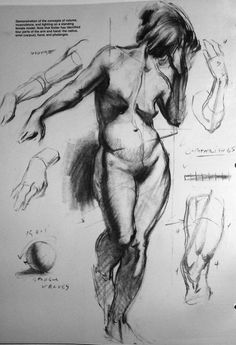 Life drawing {nude female anatomy character reference art study}