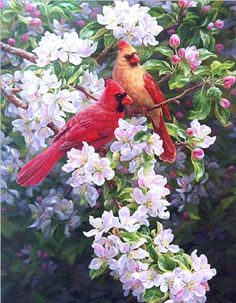 Artwork by Beth Hoselton - realistic wildlife
