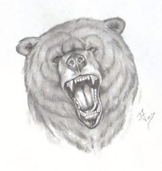 Roaring Bear Face Tattoo Drawing. TattoosHunter