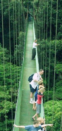#Travel across the hanging bridges in Costa Rica.