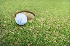 Puerto Vallarta, Golf Ball, Fields