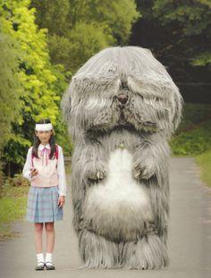 "studioroxas: ""Takashi Murakami, still shot from the upcoming film ""Jellyfish Eyes."" """