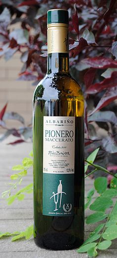 Albarino Rias Baixas D.O. Pionero Maccerato 2011-Again, purchased this on WTSO. If you haven't tried albarino, you are missing out. Great, inexpensive Spanish white.