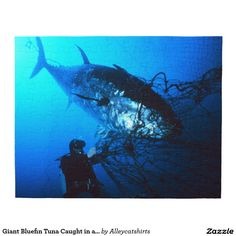 Giant Bluefin Tuna Caught in a Net Puzzle