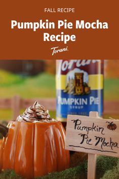 This Pumpkin Pie mocha is great for fall. This pumpkin spice mocha recipe uses Torani syrups and is easy to make at home. Grab our full pumpkin mocha recipe here! Pumpkin Drinks, Pumpkin Smoothie, Pumpkin Dessert, Pumpkin Recipes, Sugar Free Pumpkin Pie, Pumpkin Spice Syrup, Fall Dessert Recipes, Fall Recipes, Mocha Recipe