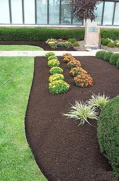 Photos The many types of landscape mulch Black mulch Flower and