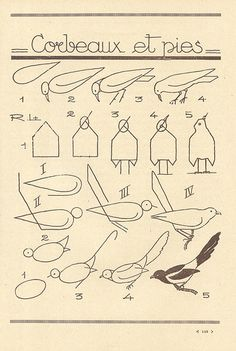 les animaux 66 by pilllpat (agence eureka), via Flickr