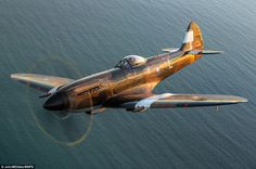 Fly past: The stunning war plane is seen gliding over water as the sun glistens off its body, colouring it a bronze-gold shade