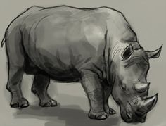 How to draw rhino or Rhinoceros. Learn to draw rhino step by step with easy to follow instruction. Again this time is another wild animal or creature so I decided to sketch something basic. Practice drawing animals is always a good way to explore different forms of anatomy design. To be a well rounded concept …