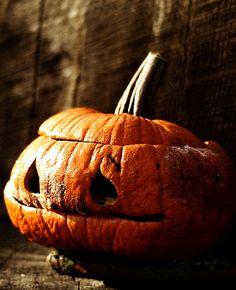 Great-grandmother pumpkin.