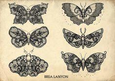 Lace Moth! YESS