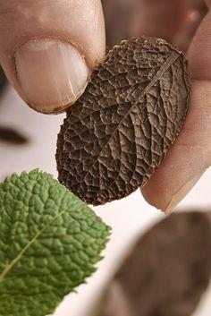 Des fraises déguisées et des feuilles chocolat-menthe... C'est l'hommage de Christine Ferber aux premiers soleils de printemps. Irrésistible.