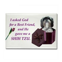 shihtzu mugs | Best Friend Shih Tzu Gifts > Best Friend Shih Tzu Magnets > Shih Tzu ...