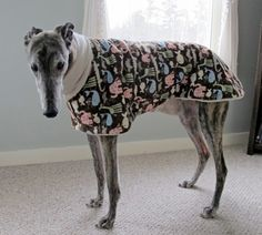 Cold, drafty house at night? DIY Greyhound pajamas!