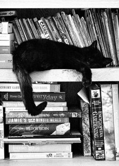 Books are relaxing!