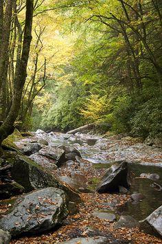 Fall River - Cherokee, NC